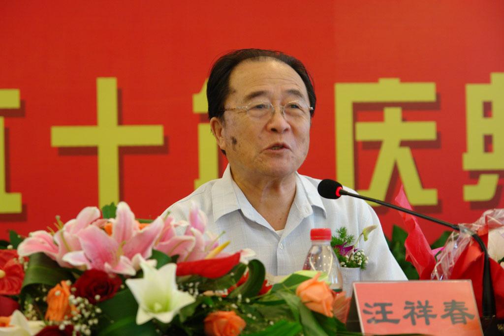 中国梦想 蒋萍图片